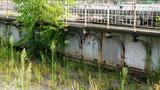 Old not working bridge