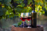 Two glasses of red wine and bottle in the vineyard - 168898984