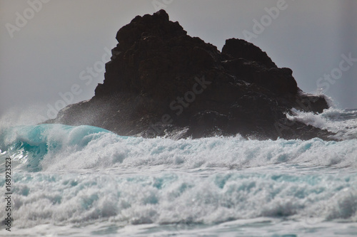 ocean wild beach rocks