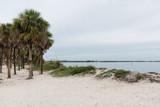 Fred Howard Park, Florida, USA