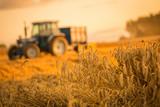 tractor harvest - 168926767