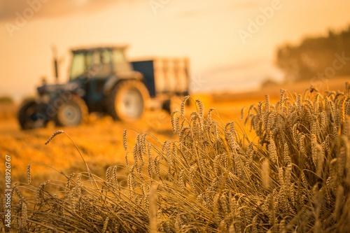 Canvas Trekker tractor harvest
