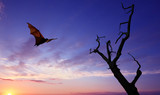 Halloween background with flying fruit bat - 168944926