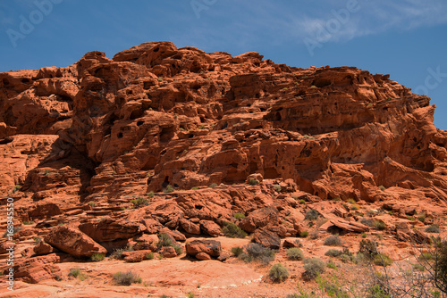 Foto op Plexiglas Bruin Valley of Fire State Park Nevada