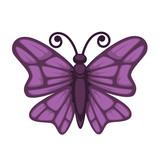 Purple colored small butterfly