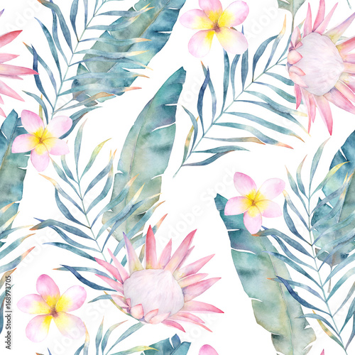 Watercolor african protea and tropical leaves pattern. Seamless motif with painted floral elements on white background for wrapping, wallpaper, fabric. Hand drawn illustration - 168973705