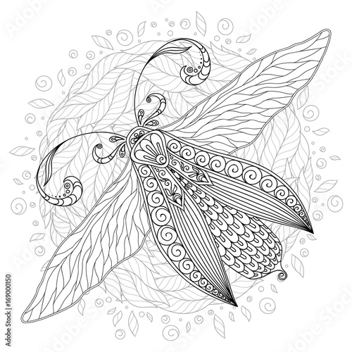 Poster Vlinders in Grunge Detailed ornamental sketch of a moth