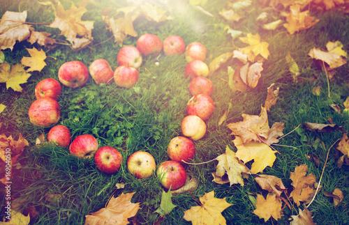 Fotobehang Herfst apples in heart shape and autumn leaves on grass
