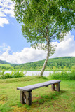 湖畔の風景