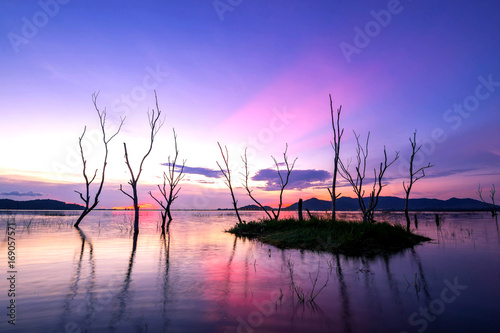 Fotobehang Purper beautiful sunset on the reservoir , reflection of silhouettes dry tree , landscape thailand
