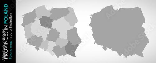 Fototapeta Wektorowa mapa województw w Polsce MONOCHROMATYCZNA
