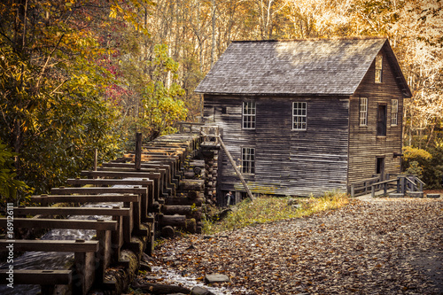 Fotobehang Herfst Fall in Great Smoky Mountains National Park