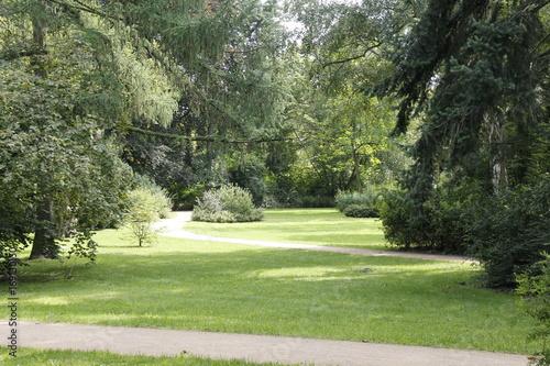 Fotobehang Pistache Parklandschaft
