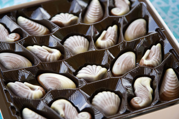 A square box of shell-shaped chocolate sweets of white and milk chocolat e
