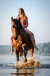 Quadro Reiterin mit Pferd im See im Sonnenaufgang