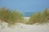 Blick durch Dünen Grass zum Meer