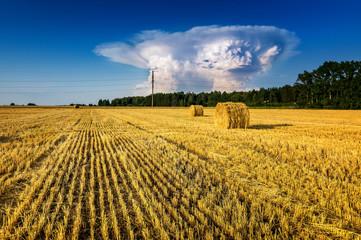 стога сена в сельском поле осенью, Россия, Урал, сентябрь