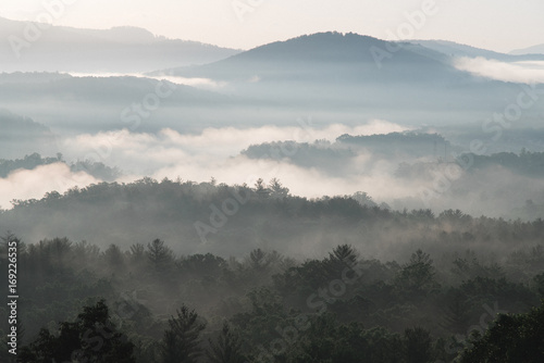 Sunrise over Blue Ridge Mountains with fog, Asheville, North Carolina - 169226535
