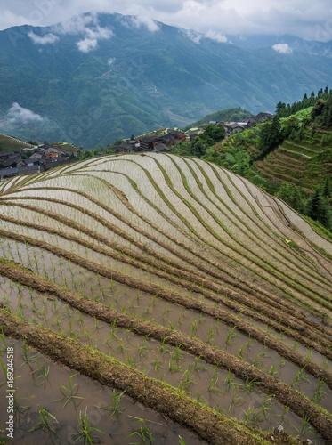 Aluminium Blauwe jeans Rice Terraces