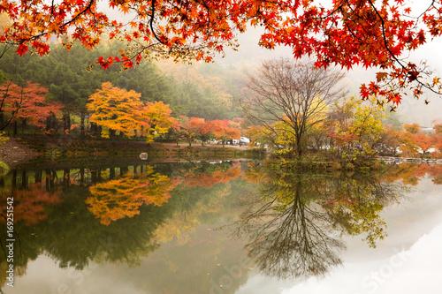 Fototapeta 호수와 가을 풍경