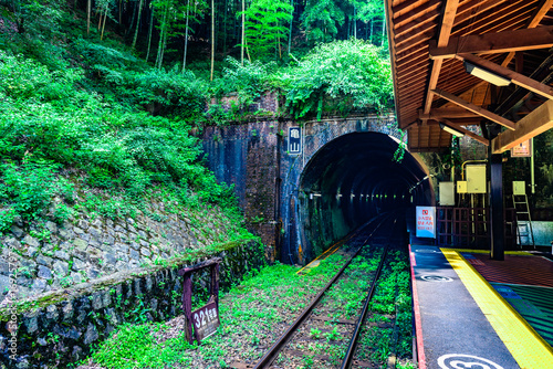 Plagát トロッコ嵐山駅