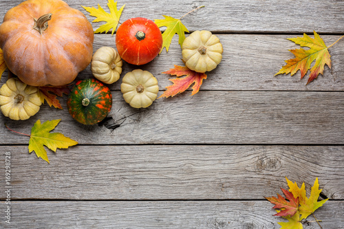 Autumn background with yellow leaves and pumpkins