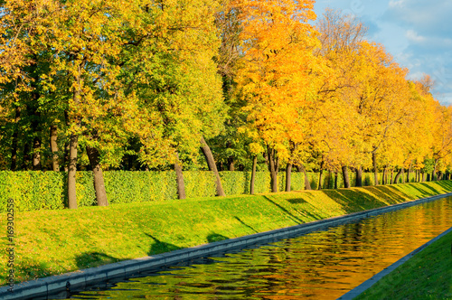 Fotobehang Oranje Autumn landscape - golden autumn trees along the city channel in the autumn day