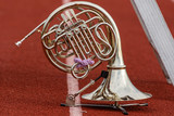 French Horn waiting its turn to perform - 169396585