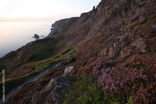 Papiers peints Marron chocolat Heather and cliffs Strangles Beach Cornwall