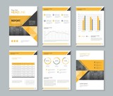 template design for company profile ,annual report , brochure , flyer  ,and page layout with business infographic element, A 4 size, vector editable - 169431134