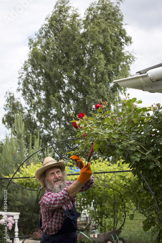 An elderly man in a garden with flowers.
