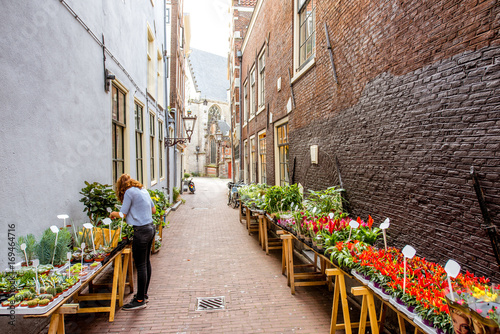 Morning view on the narrow street with flowers in Amsterdam city