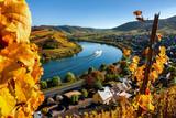 Farbenfrohe Herbststimmung im Moseltal - 169475950