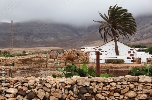 Foto op Canvas Canarische Eilanden Beautiful view and traditional architecture in the Canary Islands, Spain.
