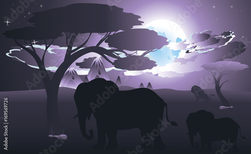 Fotobehang Purper African Night with Elephant