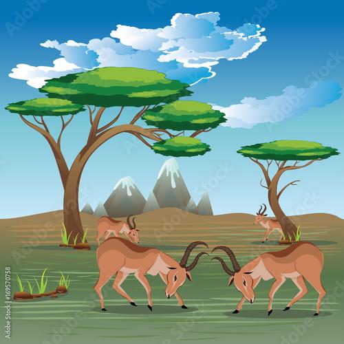 Fotobehang Pool Landscape with Antelopes