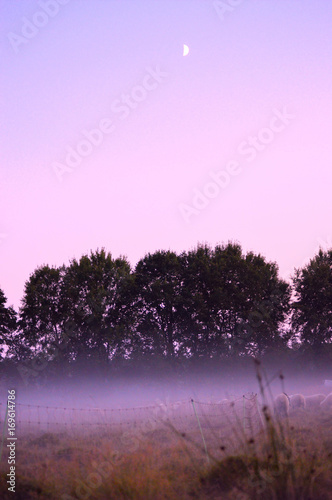 Deurstickers Purper Landschaft in der Abenddämmerung