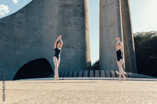 Female ballet dancers practicing a duet dance Poster