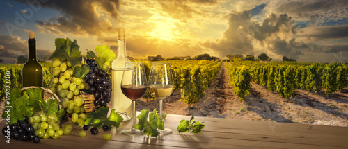 Wine at sunset, vineyard landscape