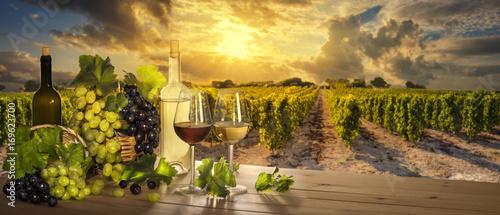 Wine at sunset, vineyard landscape