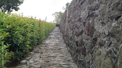 Fotobehang Weg in bos Camino a Loreto