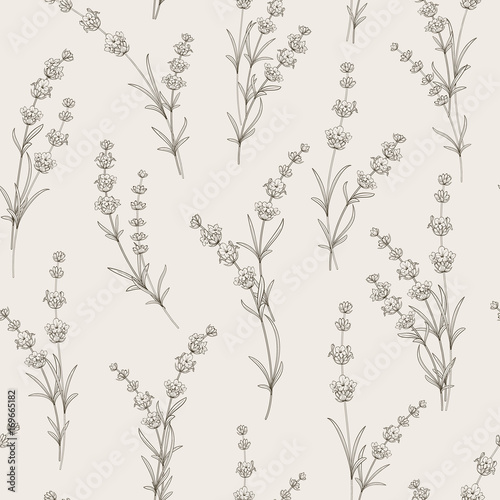 Seamless pattern of lavender flowers on a white background. Pattern with Lavender for fabric swatch. Vector illustration. - 169665182