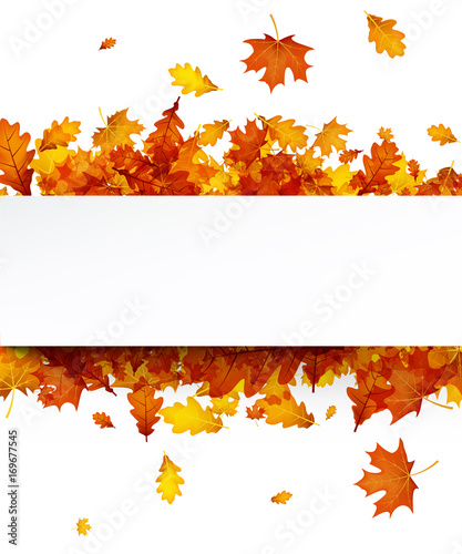Autumn background with orange leaves. - 169677545