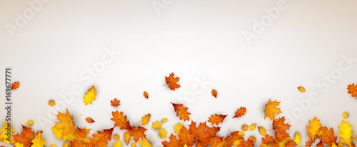 Jesień sztandar z pomarańczowymi liśćmi.