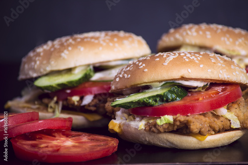 Hamburger with chicken and vegetables Poster
