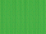 Bamboo Green texture pattern background. Vector illustration