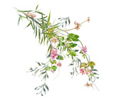 watercolor painting of leaves and flower, on white background - 169696985