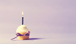 Cupcake with candle celebration theme on a purple background - 169715522