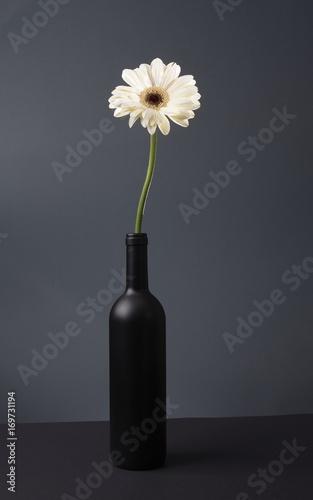Fotobehang Gerbera weiße Gerbera in schwarzer Flasche