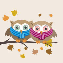 Couple of owls with scarf on a fall day
